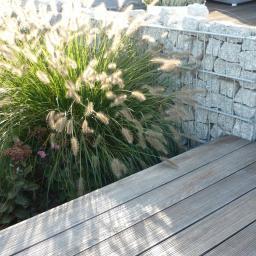 nasadzenia roślin oraz wykonanie małej architektury ( taras i gabion kamienny