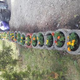 Ogrodnik Gdańsk 14
