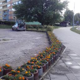 Ogrodnik Gdańsk 11
