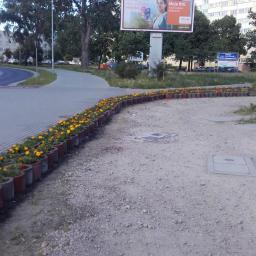 Ogrodnik Gdańsk 10