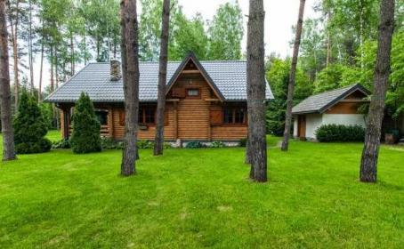 D&M Dom i Ogród 艁ukasz Stasiak - Ogrodnik 艁ód藕