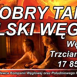 Węglomat Trzciana Sp. z o.o. Sp.K. - Węgiel Warszawa