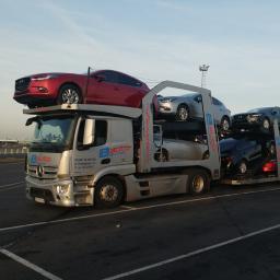 AUTOSTORCZYK - Transport międzynarodowy Sieciechów
