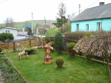 KONICZYNKA - Ogród i rośliny Kamienna Góra