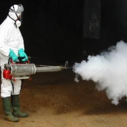 OzonSekt - Dezynsekcja i deratyzacja Krapkowice