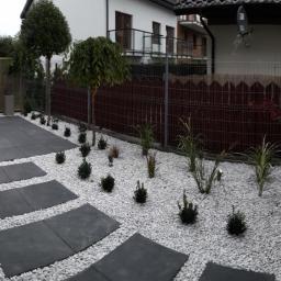 Projektowanie ogrodów Konstantynów Łódzki 18