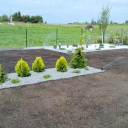 Projektowanie ogrodów Konstantynów Łódzki 15