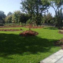 Projektowanie ogrodów Konstantynów Łódzki 7
