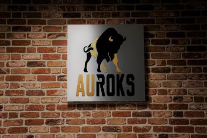 Auroks Sp. z o.o. - Kostka betonowa Niepołomice