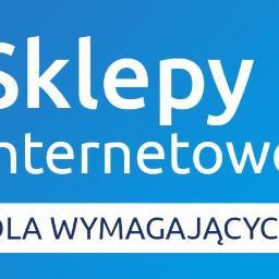 Sotech.pl - profesjonalne sklepy internetowe - Internet Ząbkowice Śląskie