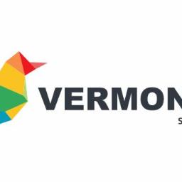 Vermontas - Wykładziny Wilno