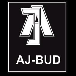 AJ-BUD Adam Janiszewski - Elewacje Smardzew