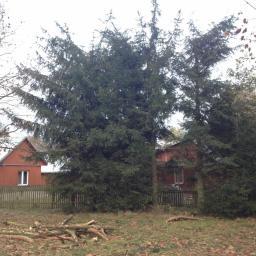 Ogrodnik Kosów Lacki 45