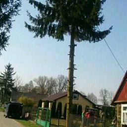 Ogrodnik Kosów Lacki 64