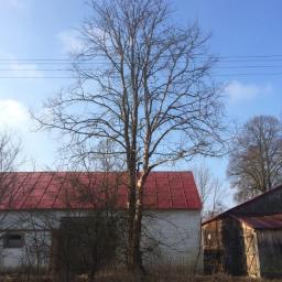 Ogrodnik Kosów Lacki 58
