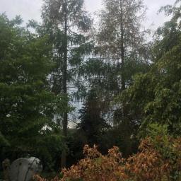Ogrodnik Kosów Lacki 10