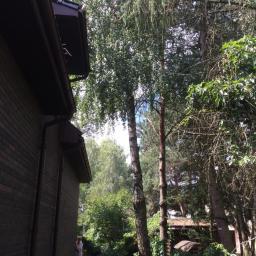 Ogrodnik Kosów Lacki 8