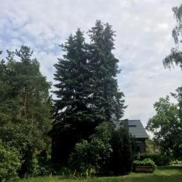 Ogrodnik Kosów Lacki 4
