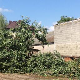 Ogrodnik Kosów Lacki 84