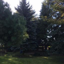 Ogrodnik Kosów Lacki 81