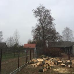Ogrodnik Kosów Lacki 88
