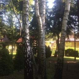Ogrodnik Kosów Lacki 25