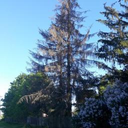 Ogrodnik Kosów Lacki 34