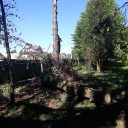 Ogrodnik Kosów Lacki 36