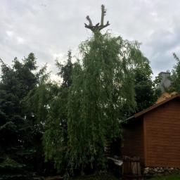 Ogrodnik Kosów Lacki 33