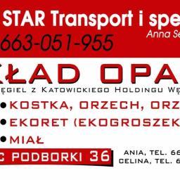 Euro-Star Transport i Spedycja Anna Seweryn-Keller - Transport Krajowy Mirzec