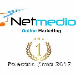 Netmedio - Projektowanie logo Bierutów