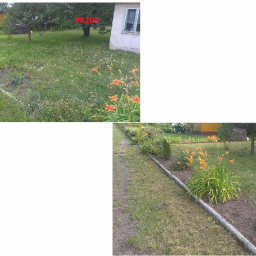 Golden Grass - Prace działkowe Zduńska Wola