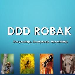 DDD Robak - Logo