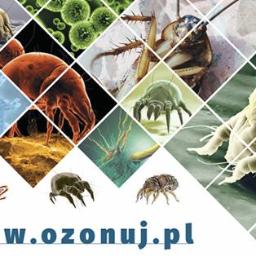 Centrum Ozonowania - Ozonuj.Pl - Dezynsekcja i deratyzacja Tarnobrzeg