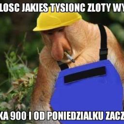 Przedsiębiorstwo Budowlane Przemysław Motyl - Budowanie Domów Łazy wielkie