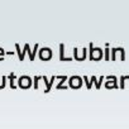 Ford Re-Wo Auto Serwis - Busy Lubin