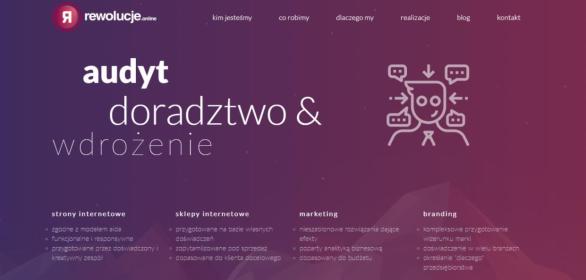 Rewolucje Online sp. z o.o. - Ubezpieczenia Kraków