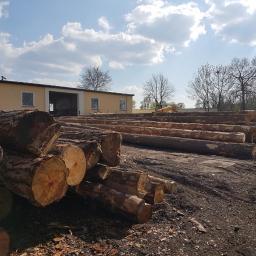 Skład drewna Steklinek 3