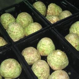 heemels - Warzywa herkenbosch