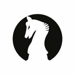 RoyalArt Agencja Interaktywna - Projektowanie logo Bydgoszcz