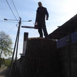 Zakład Usług Leśnych - Odśnieżanie Płock