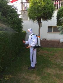 Inter-Pest - Dezynsekcja i deratyzacja Polkowice