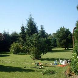 Us艂ugi ogrodnicze-J.Stankiewicz - Piel臋gnacja Ogrodów K艂odawa