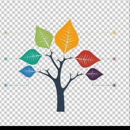 Zielony Ogród - Usługi Ogrodnicze - Prace działkowe Resko