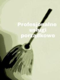 Tidy Team Marlena Kozera - Sprzątanie biur Warszawa