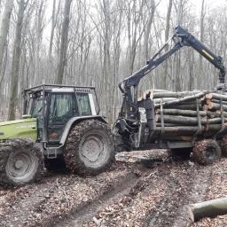 Wywóz drewna