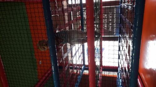 Klub dzieciecy Domek - Usługi Włodawa