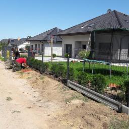 Ogrodnik Mścice 34
