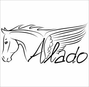 Stajnia Alado - Noclegi Radgoszcz