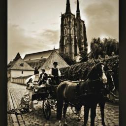Fotografowanie Wrocław 43